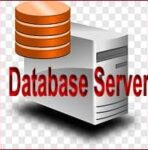 What is Database Server: Definition, Types, Examples, Functions, Working